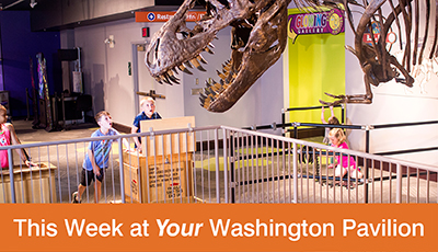 This Week at Your Washington Pavilion