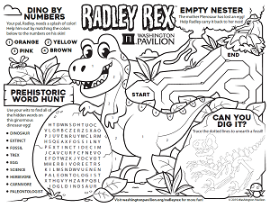 Radley Rex Activity Sheet